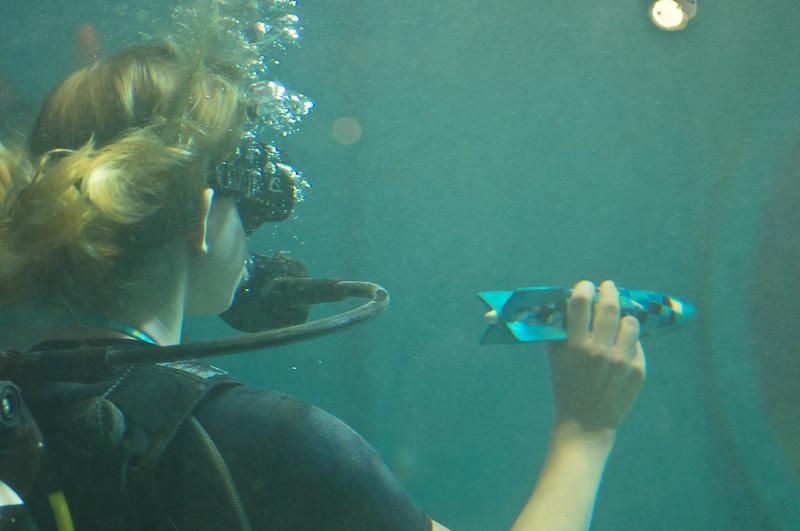 Für alle denen Unterwasser langweilig ist oder die im Schwimmbad tauchen gibt es auch Spielzeug zum Zeitvertreib