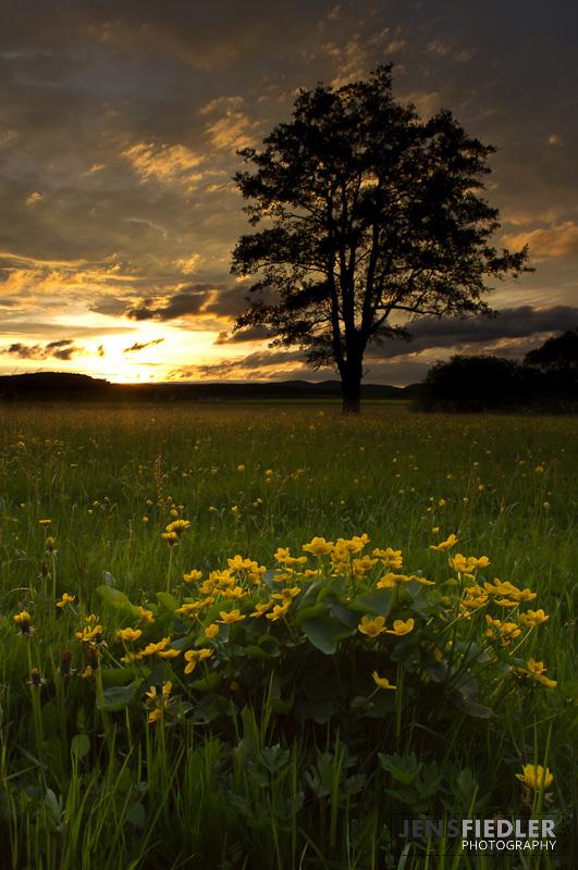 Kurz vor Sonnenuntergang, 18mm und Grauverlaufsfilter