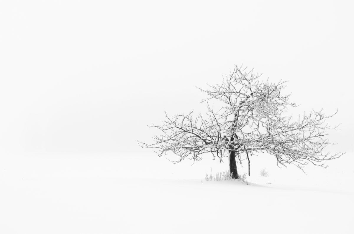 Hoherodskopf im ersten Schnee